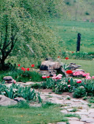 Garden path -- will soon be part of picture trails